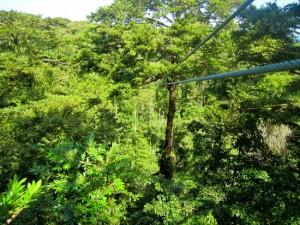 sky-zipline-canopy-tour
